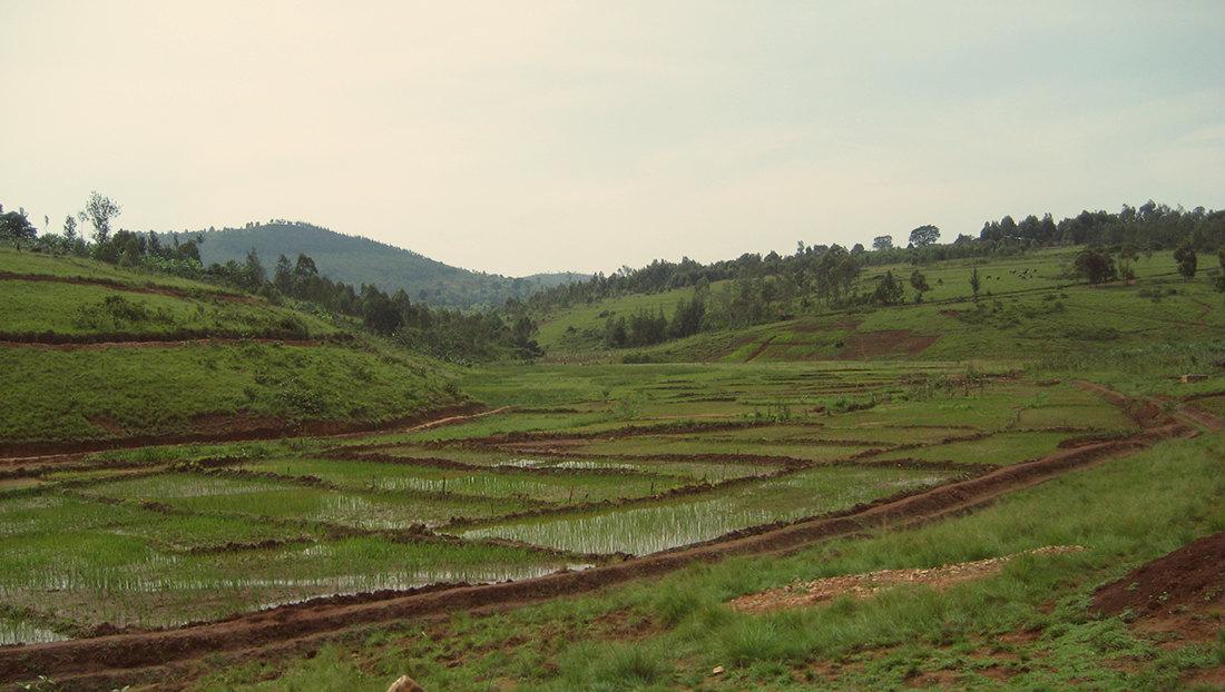 Missioni all'estero per favorire la sicurezza alimentare e la diffusione dell'energia
