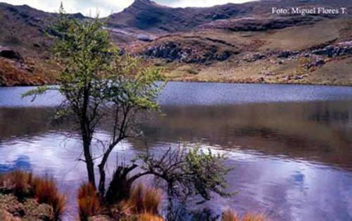 H2Ohhh! Acqua potabile per Pomabamba
