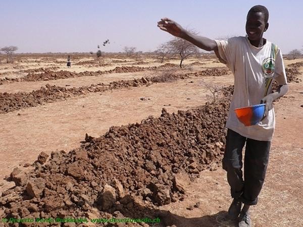 Progetto RECUPERO DELLE TERRE (Sahel Burkinabé)